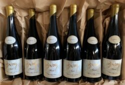 Izway Wines Christmas 6 pack